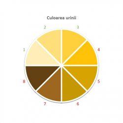 Culoarea urinii